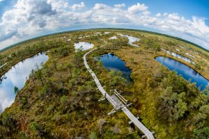 Everglade Drone Photography